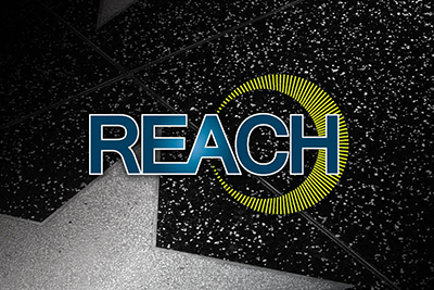 Image depicting the REACH conference